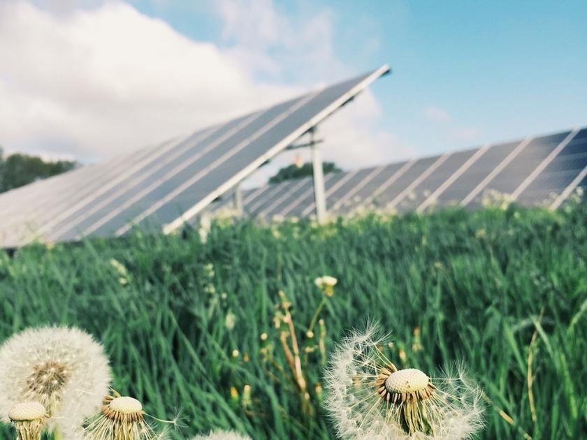 Alagoas alcanças 81% do uso de energia com recursos renováveis