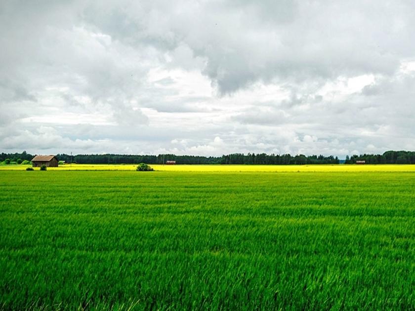 Agricultura está se tornando a nova aposta dos bilionários